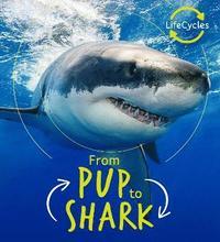 bokomslag Lifecycles - Pup To Shark