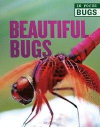 bokomslag Beautiful Bugs