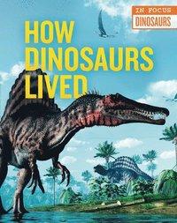 bokomslag How Dinosaurs Lived