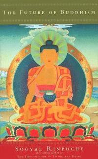 bokomslag The Future Of Buddhism