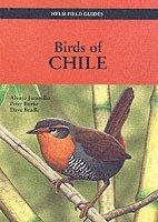 bokomslag Birds of Chile
