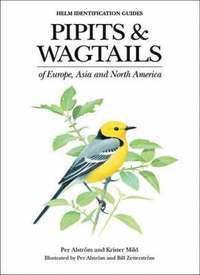 bokomslag Pipits and Wagtails of Europe, Asia and North America