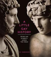 bokomslag A Little Gay History