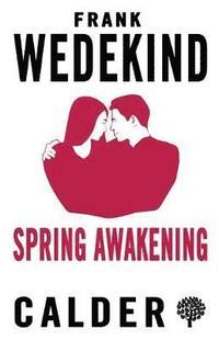 bokomslag Spring Awakening