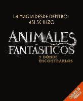 bokomslag Magia Desde Dentro: Asi Se Hizo Animales Fantasticos Y Donde Encontrarlos