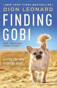 bokomslag Finding Gobi: A Little Dog with a Very Big Heart