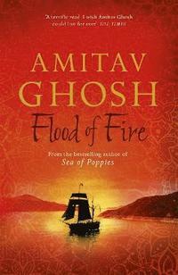 bokomslag Flood of Fire
