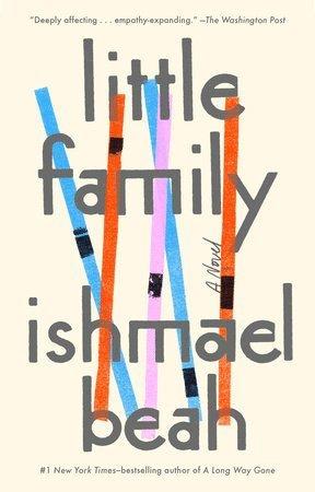 bokomslag Little Family