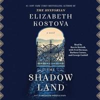bokomslag The Shadow Land