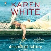 bokomslag Dreams of Falling