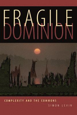bokomslag Fragile Dominion