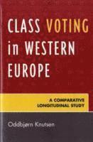 bokomslag Class Voting in Western Europe