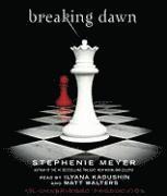 bokomslag Breaking Dawn