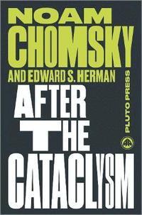 bokomslag After the Cataclysm