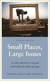 Small Places, Large Issues - Fourth Edition: An Introduction to Social and Cultural Anthropology