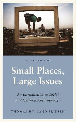 bokomslag Small Places, Large Issues - Fourth Edition: An Introduction to Social and Cultural Anthropology