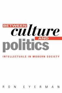 bokomslag Between Culture and Politics