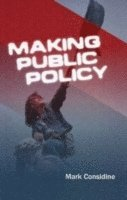 bokomslag Making Public Policy: Institutions, Actors, Strategies