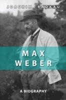 bokomslag Max Weber