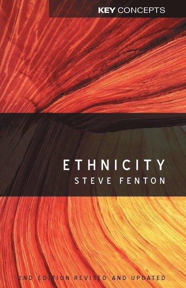 bokomslag Ethnicity