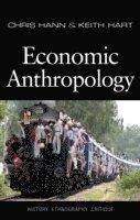 bokomslag Economic Anthropology