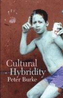 bokomslag Cultural Hybridity