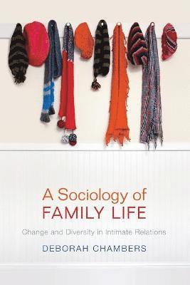 bokomslag A Sociology of Family Life