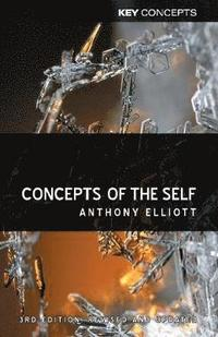 bokomslag Concepts of the Self