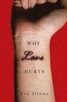 bokomslag Why Love Hurts