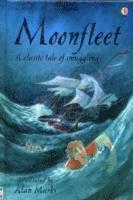 bokomslag Moonfleet
