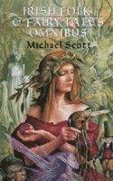 bokomslag Irish Folk And Fairy Tales