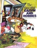bokomslag The Essential Calvin And Hobbes