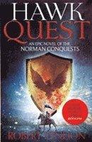 bokomslag Hawk Quest