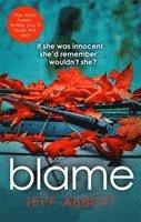 bokomslag Blame
