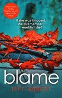 bokomslag Blame: The addictive psychological thriller that grips you to the final twist