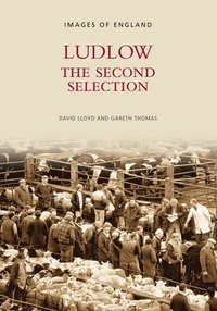 bokomslag Ludlow The Second Selection