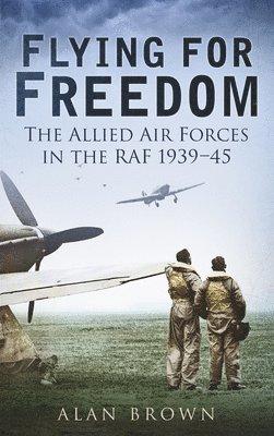 bokomslag Flying for Freedom