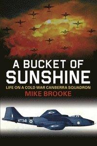 bokomslag A Bucket of Sunshine