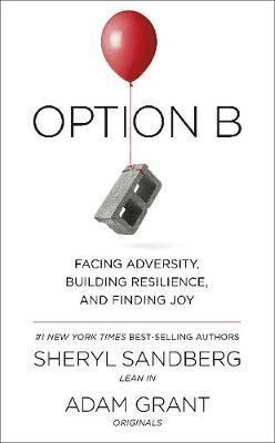 bokomslag Option B