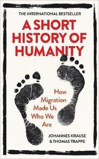 bokomslag A Short History of Humanity