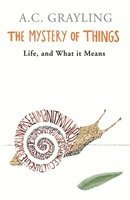 bokomslag The Mystery of Things