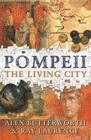bokomslag Pompeii