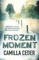 bokomslag Frozen Moment