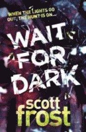 bokomslag Wait For Dark