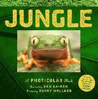 bokomslag Jungle: A Photicular Book