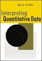bokomslag Interpreting Quantitative Data
