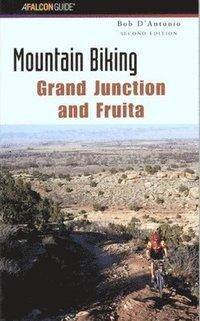 bokomslag Mountain Biking New Mexico