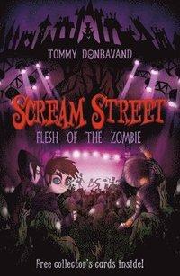 bokomslag Scream Street: Flesh of the Zombie