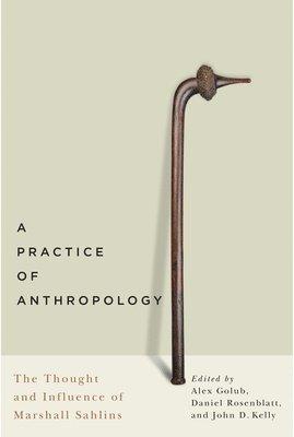 bokomslag A Practice of Anthropology