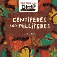 bokomslag Centipedes and Millipedes